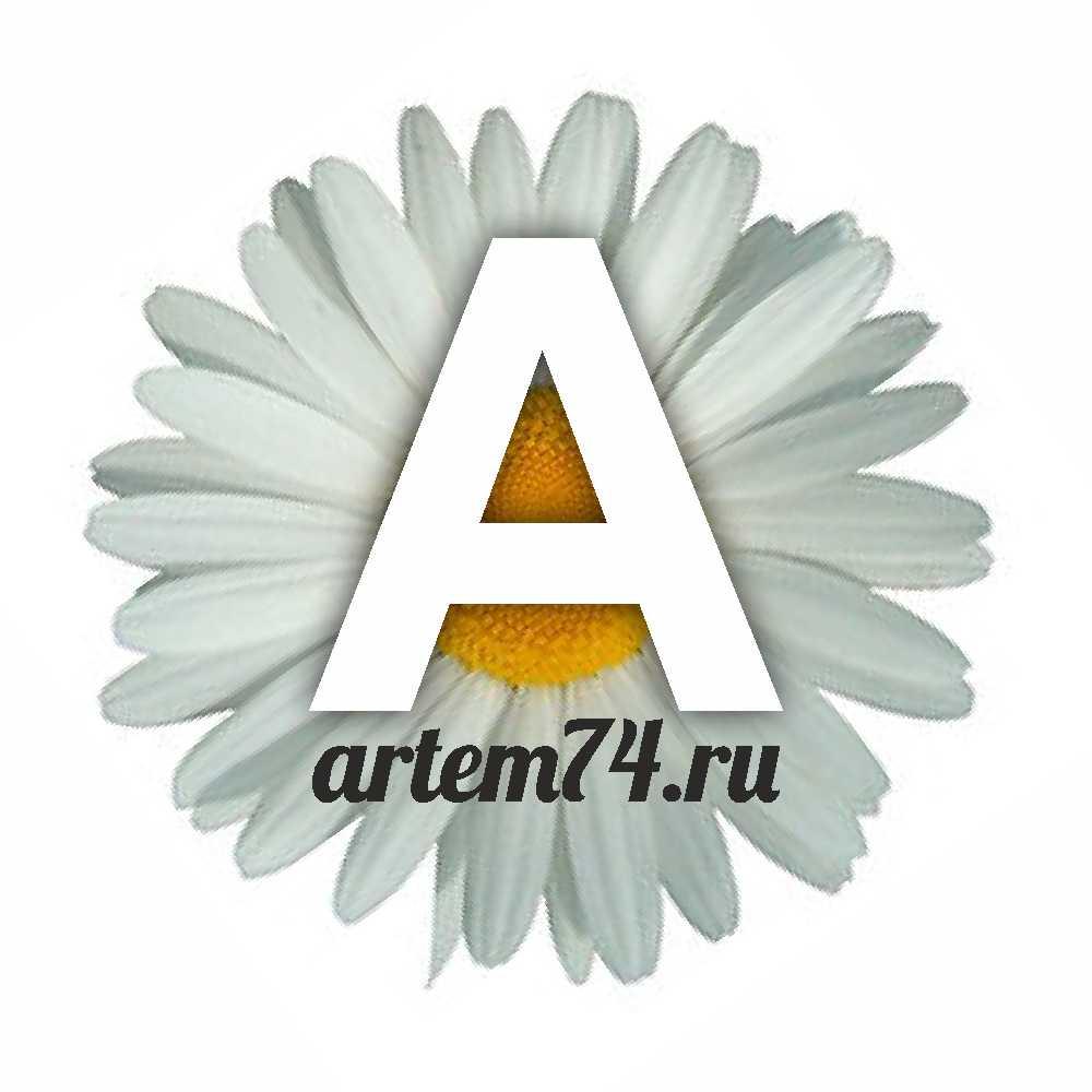 ARTEM74.RU